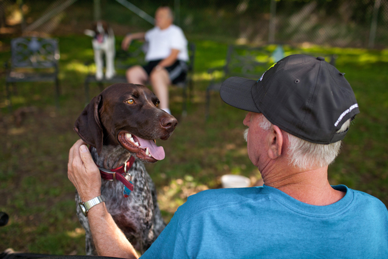 Man petting a happy dog outside in a dog park